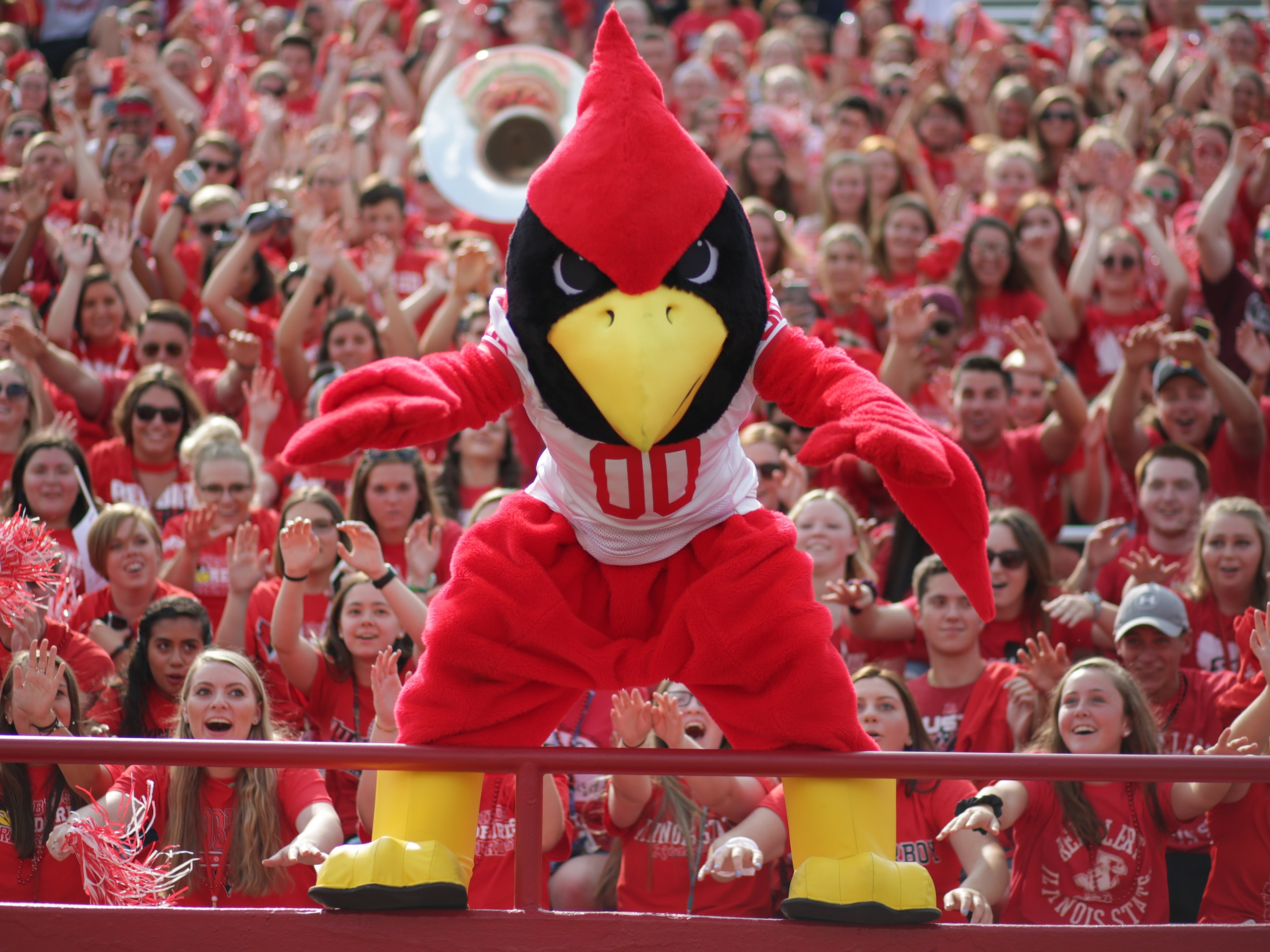 Reggie standing on a railing in front of a crowd of students in the football stadium.